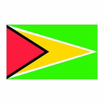 Guyana Flag Cardboard Cutout - $0.00