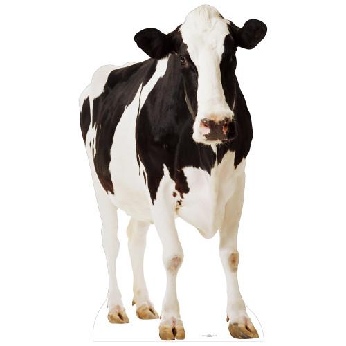 Cow Cardboard Cutout