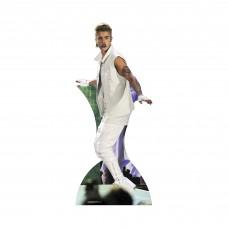 Justin Bieber Arms