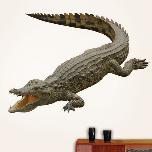 Australian Salt Water Crocodile Wall Decal