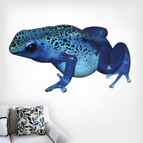 Poison Dart Frog Wall Decal