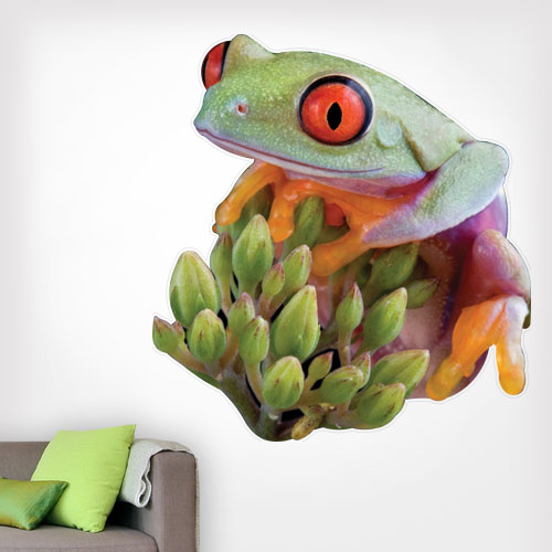 Red Eyed Tree Frog Wall Decal