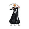 Bleach Cardboard Cutouts - $42.95